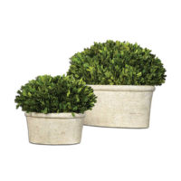 greenery in oval planter
