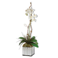 orchid in mirror pot